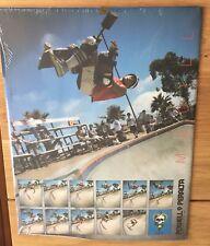 Mike McGill Snake Powell Peralta Bones Brigade Skate 1980 S vintage poster RARE