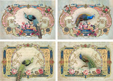 Vintage inspired peacock with fancy frames cards tags ATC altered art set of 8