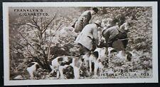 Miss Guest's Foxhounds  Dorset  Vintage  Photo Card  VGC / EXC