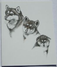 Alaskan Malamute Dog Laura Rogers Pet Notes Notecard Set of 10