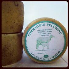 Formaggio sardo Pecorino di Osilo. Forma intera sotto vuoto. Peso kg 1.90 circa