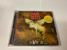 WHAT IF... ~ Mr. Big CD MINT/EX 8024391050521 [FILED M]