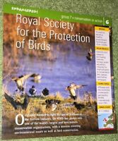 Endangered Species Animal Card-Conservation In Action-Royal Society For The Prot