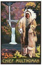 Chief Multnomah Multnomah Falls Oregon Waterfall Native American Modern Postcard