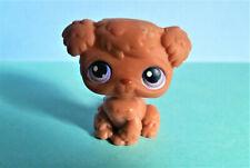 Nuevo CollectA caratea ISLAND Tortuga Plastic Toy Wild Zoo Animal