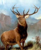 """Edwin Landseer CANVAS PRINT The Monarch of the Glen Stag Deer poster 16""""X12"""""""