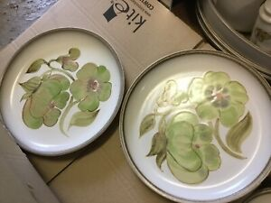 Denby Troubadour Dinner Plates X 2 Diameter 10 Inches
