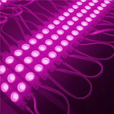 20X LED Module Werbebeleuchtung ad Showcases Pink Purple Advertisement 12V