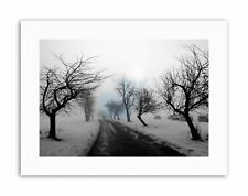 LANDSCAPE BLACK WHITE SNOW WINTER TREE Nature Canvas art Prints