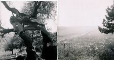 DIEKIRCH c. 1935 - 2 Photos Luxembourg - P233