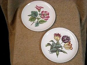 "set of (2) Copeland Spode ""S 3241"" Bread Plates Begonia & Tulip Flowers SIGNED"