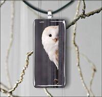 BIRD WHITE OWL FASHION DESIGN RECTANGULAR GLASS PENDANT NECKLACE -flk9Z