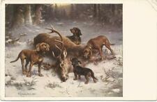 Dogs, Hunting, Dachshunds and Hounds with a Deer, C. Reichert, Old Postcard