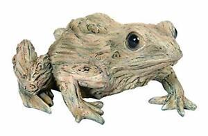 Vivid Arts - Wood Life Frog Home or Garden Decoration (WL-FROG-F)