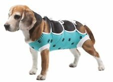 E-Collar Alternative for Cats and Dogs Designed to Protect Abdominal Wounds and