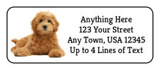 60 Goldendoodle #10 Dog Puppy Glossy Photo Quality Return Address Labels
