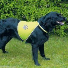Vêtements et chaussures jaune en nylon pour chien