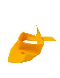 Dreiecktuch Halstuch Bandana Kopftuch Mundschutz Mund- und Nasenbedeckung Nase