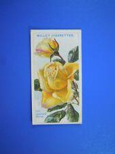 ORIGINAL CIGARETTE CARD: Wills - Roses - Mrs Leonard Petrie No.68