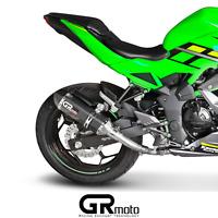 Exhaust for Kawasaki NINJA Z 125 2019 2020 GRmoto Carbon