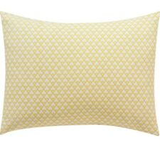 Dwellstudio Masala Citrine Standard Pillowcase Pair NIP