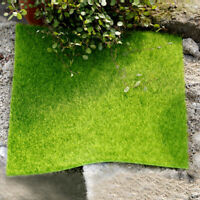 Garden DIY Grass Lawn Fairy Dollhouse Moss Miniature Mushroom Craft Pot Decor
