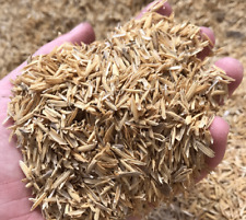 RICE HUSKS | RICE HULLS | 100% NATURAL ORGANIC COMPOST HYDROPONIC GROWING MEDIA