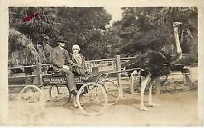 1920s Real Photo Pc; Couple in Ostrich Cart Los Angeles Ostrich Farm Ca Unposted