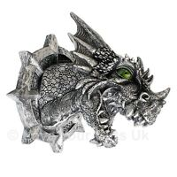 Ferox Dragon Head Wall Plaque 20.5 cm High Nemesis Now LED Colour Changing Eyes