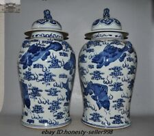 Old Chinese Dynasty Blue and White porcelain Fish Bottle Pot jar Crock Tank Pair