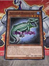 Carte YU GI OH ALLIGATOR BERCEAU-GRIS DOCS-FR033 x 3