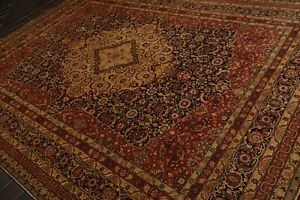 "8'11"" x 11'9"" Hand Knotted Wool Tabrizz 250 KPSI Oriental Area Rug Black 9x12"