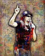 Kid Rock Tribute Poster Kid Rock Pop Art Print 16x20inch Free Shipping Us