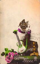 c.'22 Dressed Animal, Beautiful Cat, Bonne Annee, Guitar, Old Postcard