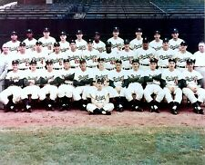BROOKLYN DODGERS 1950's COLOR TEAM PHOTO