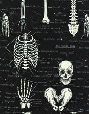 Timeless Treasures Glow in the Dark Skeletons 100% cotton fabric by the yard