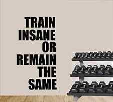 Train Insane Gym Fitness Workout Wall Quote Sticker Decal Wall Decals Stickers