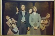 """The Sound Of Music 24"""" x 36""""  Movie Poster Julie Andrews Christopher Plummer"""