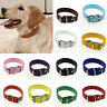 Newly Leather Pure Color Cute Dog Pet Cat Puppy Collar Neck Buckle Adjustable