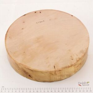 English Lacewood woodturning or wood carving bowl blank.  255 x 52mm.  6286A