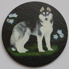Siberian Husky -  Dog - Coaster - Welsh Slate