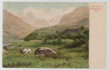 1911 Pietermartzburg South Africa picture Postcard Cover to England The Horns
