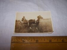 Antique Vintage Photo of Man in Buggy with Paint Horse BILL TARIL or FARIL
