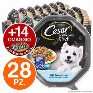 Cesar Scelta dello Chef Cibo per Cani Pesce Riso Verdure - 42 Vaschette da 150g