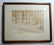 Signed Framed Photograph - Forest Scene - Birch Trees In Snow by William Plante