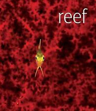Reef - illustrated book of reefs around the world  FREE SHIPPING