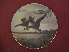 RARE collector plate JAMES MEGER Canada Geese Goose SIGNED  Waterbird