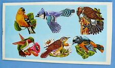 VINTAGE DENNISON BIRDS 6 STICKER 1 SHEET FINCH,ORIOLE,HUMMING BIRD,BLUE JAY