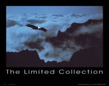 WILDLIFE ART PRINT Eagle in Clouds