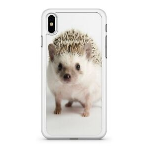 Chubby Cute Cuddly White Mixed Coloured Mini Baby Hedgehog 2D Phone Case Cover